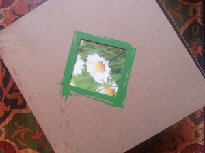 Conscious Box 2013